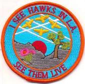 hawks_patch.jpg